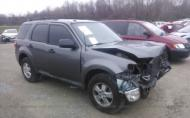 2009 FORD ESCAPE XLT #1263402060