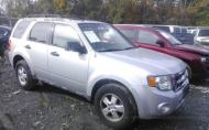 2009 FORD ESCAPE XLT #1273853435