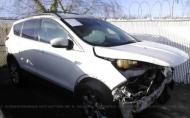 2013 FORD ESCAPE SEL #1302300052