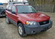 2005 FORD ESCAPE XLT #1307017180