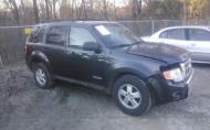 2008 FORD ESCAPE XLT #1307355600