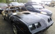 1981 PONTIAC FIREBIRD TRANS AM #1318843502