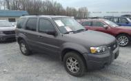 2005 FORD ESCAPE LIMITED #1334443675