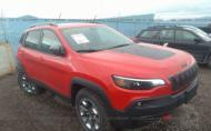 2019 JEEP CHEROKEE TRAILHAWK #1348257080