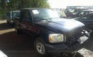 2005 DODGE DAKOTA ST #1369204518