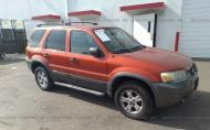 2006 FORD ESCAPE XLT #1464303990