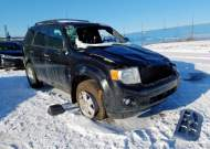 2011 FORD ESCAPE XLT #1479560632