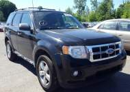 2010 FORD ESCAPE XLT #1538464738
