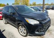2014 FORD ESCAPE TIT #1589057725