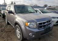 2008 FORD ESCAPE XLT #1633143948