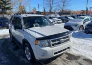 2009 FORD ESCAPE XLT #1663978455