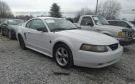 2004 FORD MUSTANG STANDARD/DELUXE/PREMIUM #1670575052