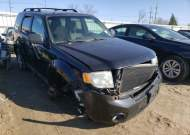 2010 FORD ESCAPE XLT #1677869732