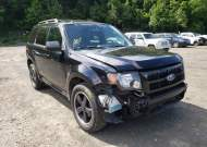 2010 FORD ESCAPE XLT #1723849962