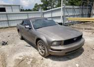 2005 FORD MUSTANG #1748795688